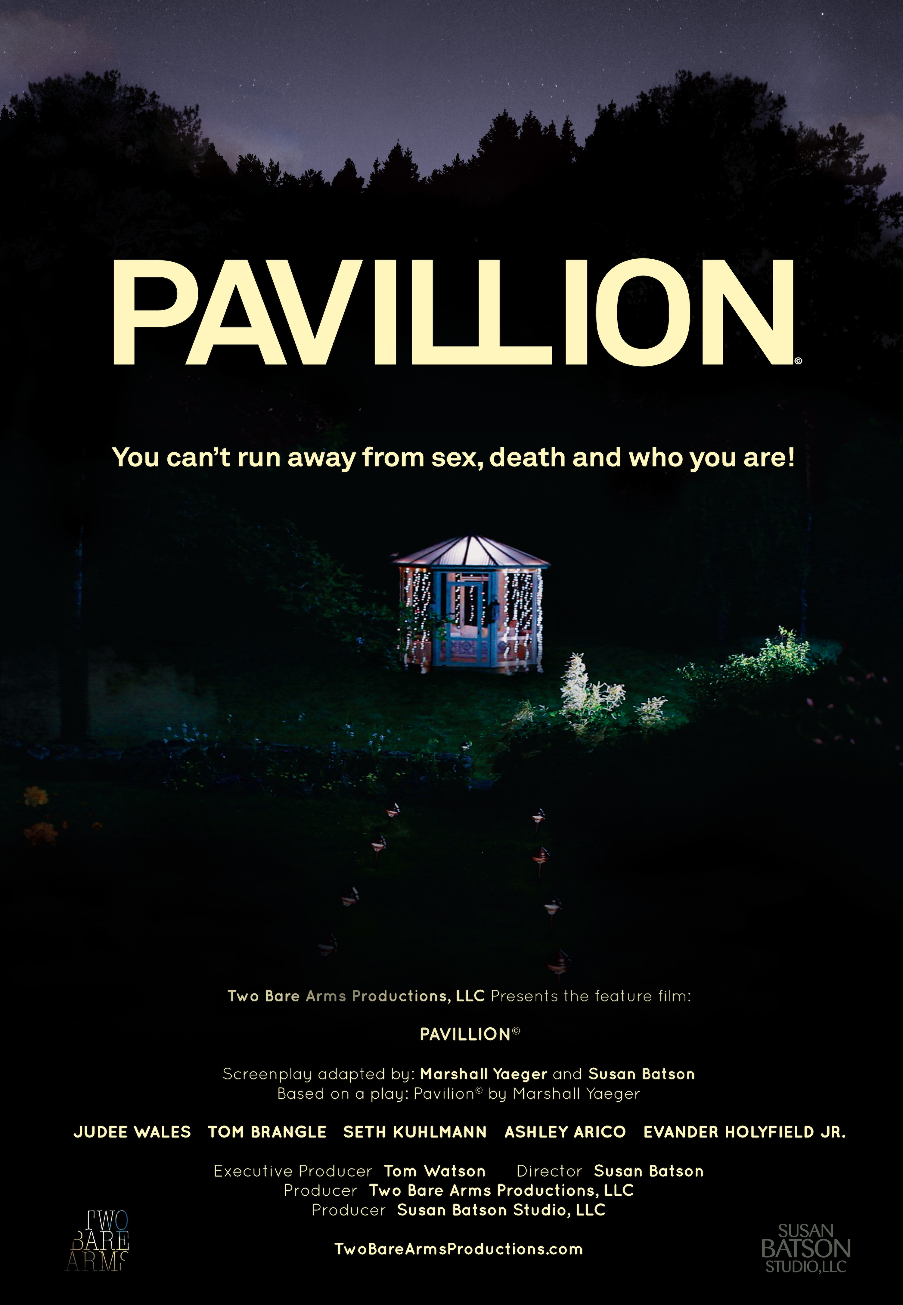 PAVILLION_POSTER.FINAL.SMALL
